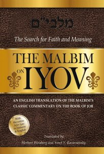 The Malbim On Iyov