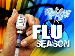 NY Confirms Flu Cases In 44 Counties, All NYC Boroughs