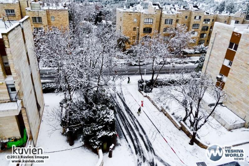 Snow Crash Essays – 328601