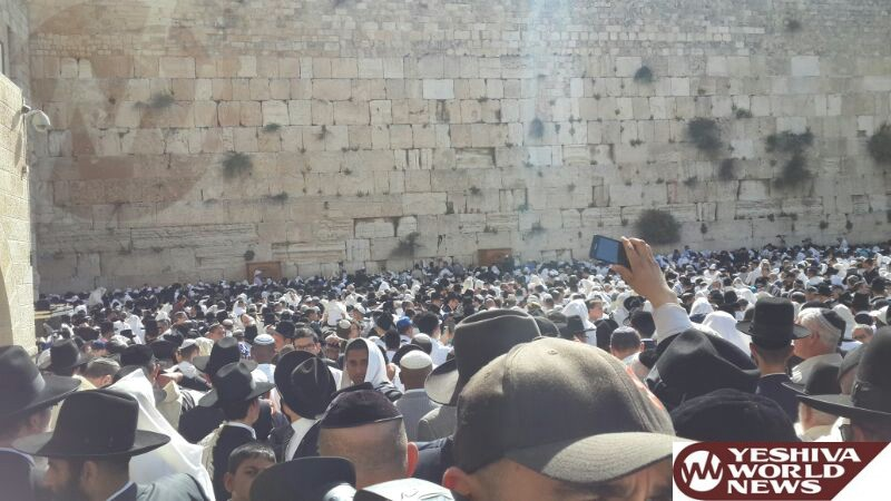 PHOTOS: Over 60,000 Take Part in Birchas Kohanim