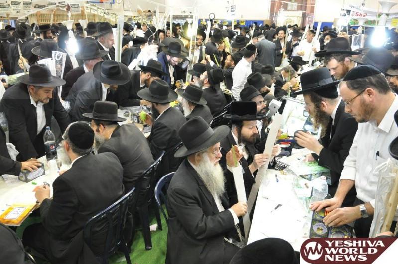 Photo Essay: Yidden Buying Arba Minim In Bnei Brak (Photos By JDN)