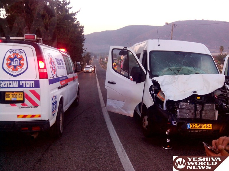 PHOTOS: Israel: Cows on the Road Lead to MVA