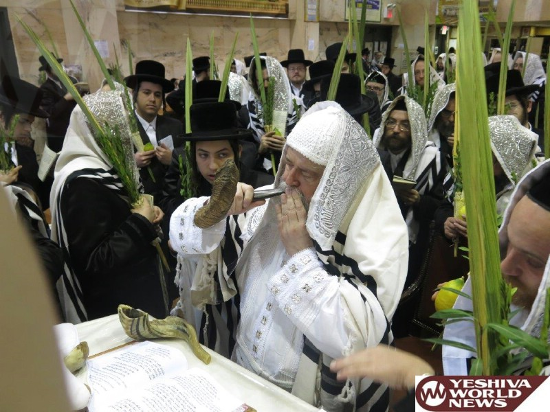 Photo Essay: Muktacher Rebbe - Sukkos 5775 (Photos By JDN)