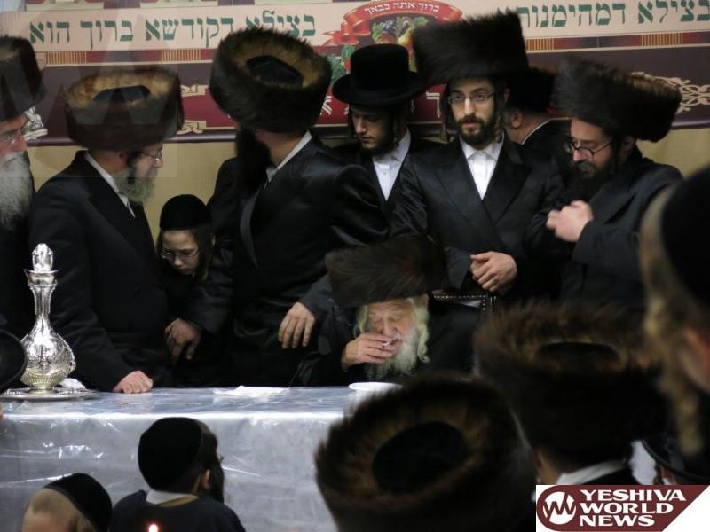 Photo Essay: Skulener Rebbe - Sukkos 5775 (Photos By JDN)