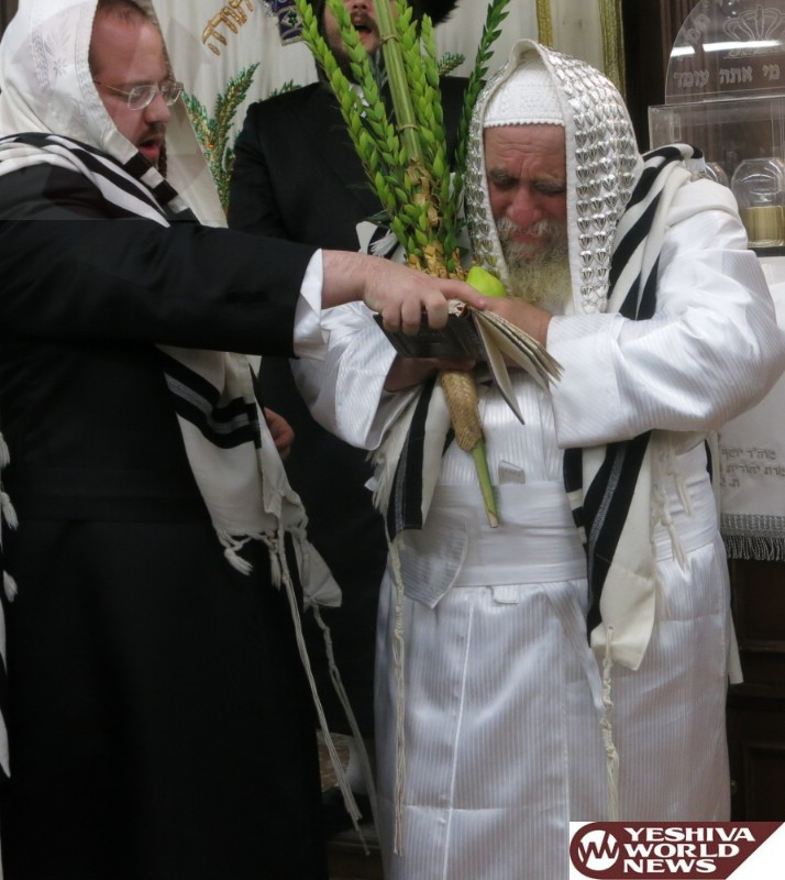 Photo Essay: Sukkos 5775 By Hagon HaRav Yecheskel Roth; Karlsburger Rov (Photos By JDN)