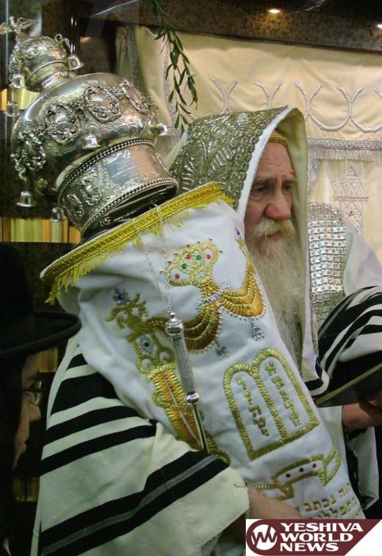 IMG_3 hoshana rabbah