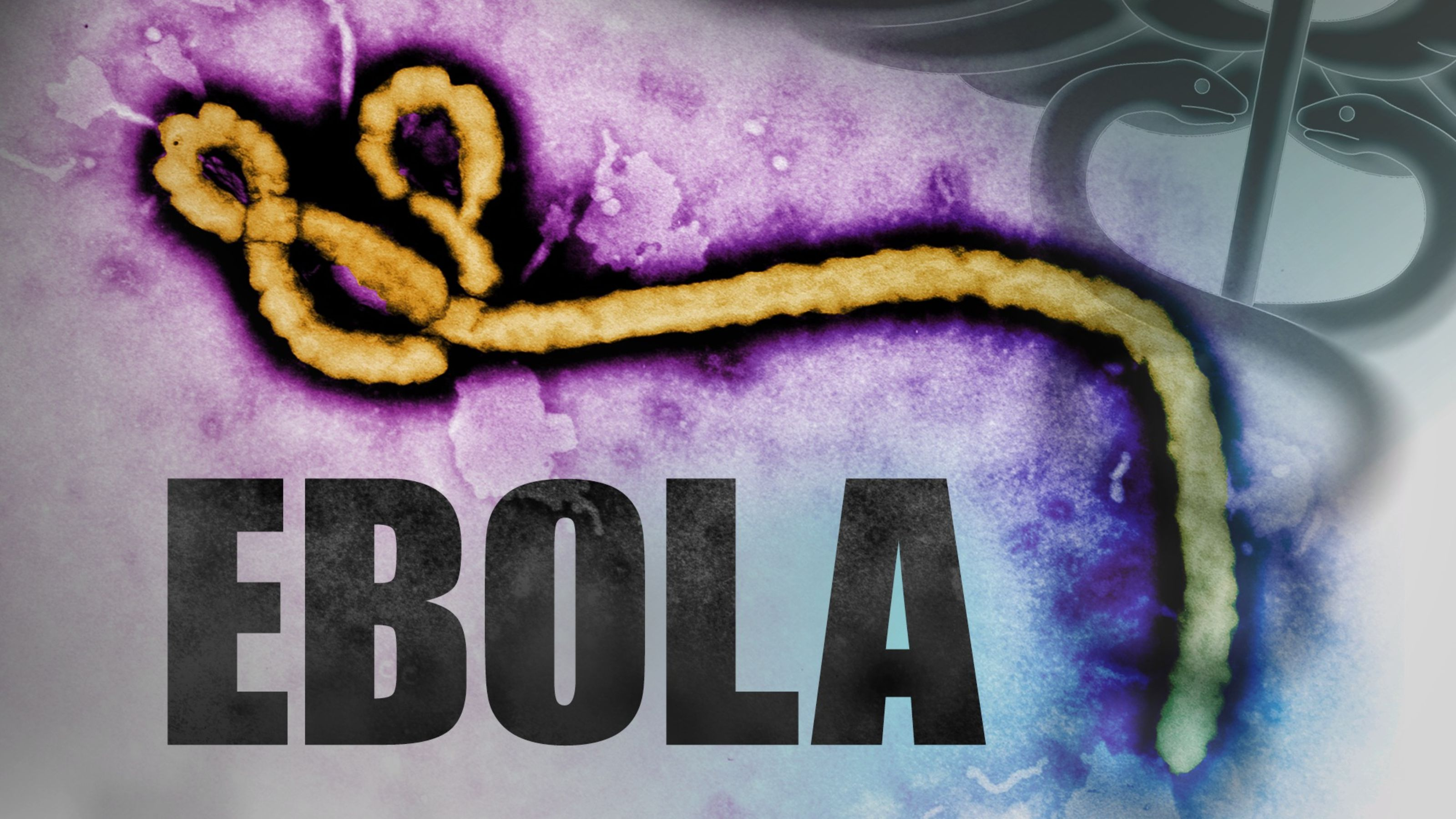 FIRST CASE OF EBOLA CONFIRMED IN NYC