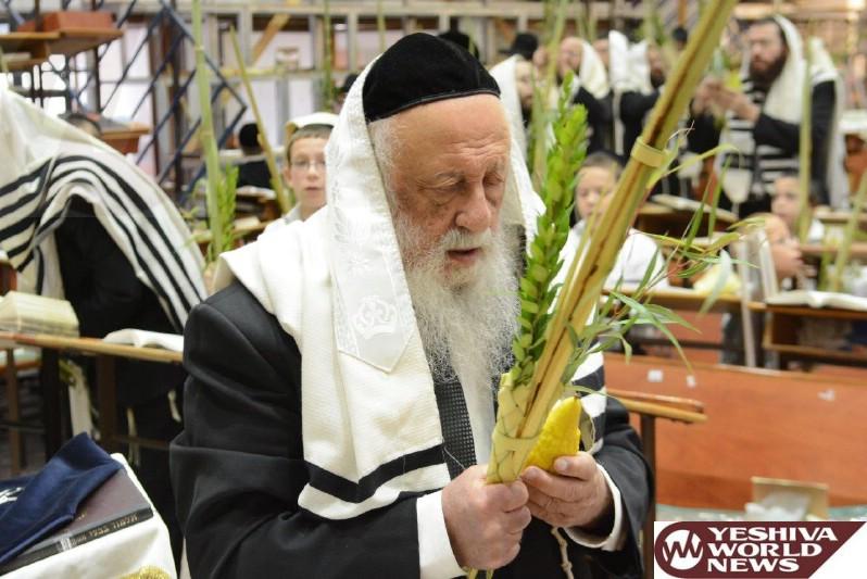 Photo Essay: Sukkos 5775 At Ponevezh Yeshiva (Photos By JDN)