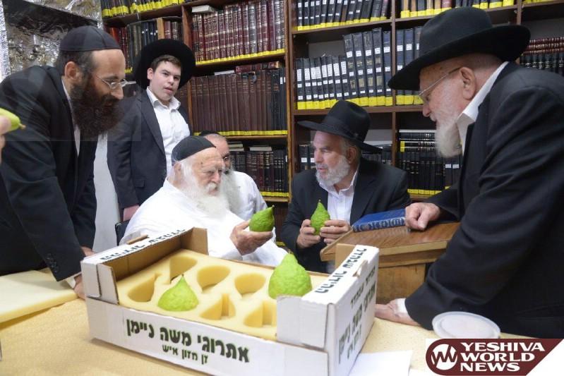 Photo Essay: Hagon HaRav Chaim Kanievsky Shlita Choosing Esrogim For Sukkos (Photos By JDN)