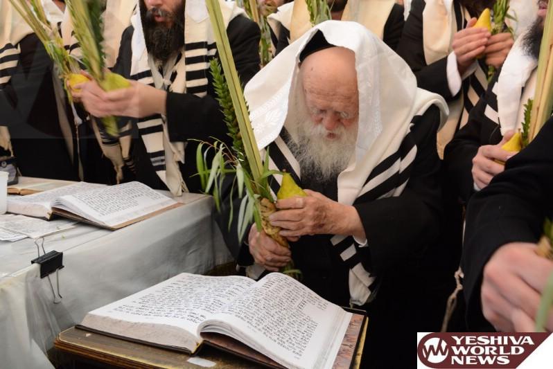 Photo Essay: Hagon HaRav Chaim Kanievsky - Sukkos 5775 (Photos By Moshe Goldstein - JDN)