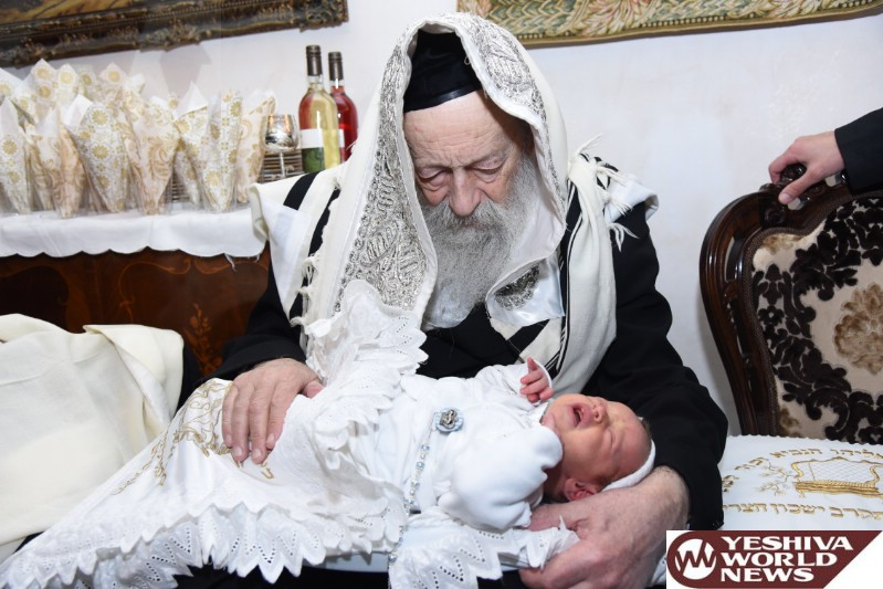 PHOTOS: Great Grandson Named After Hagon HaRav Wosner ZATZAL (Photo Credit: Moshe Goldstein - JDN)