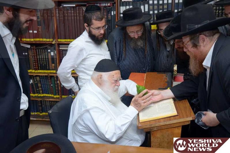 Photo Essay: Hagaon HaRav Chaim Kanievsky Checking Esrogim For Sukkahs (Photos By JDN)