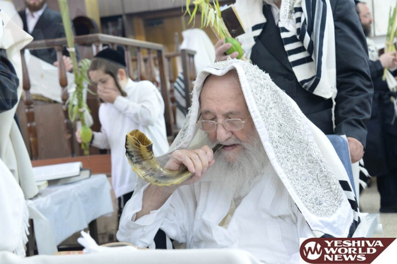 Photo Essay [GALLERY #3]: Admorim And Rabbonim Sukkos 5776 (Photos By JDN)