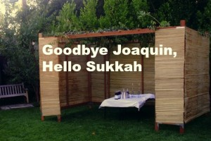 Shmini Atzeres and the Sukkah