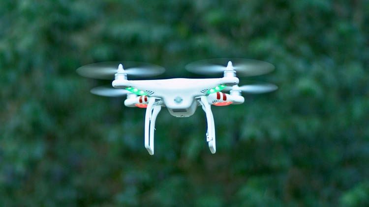 Tourist Ticketed For Flying Drone In Central Park