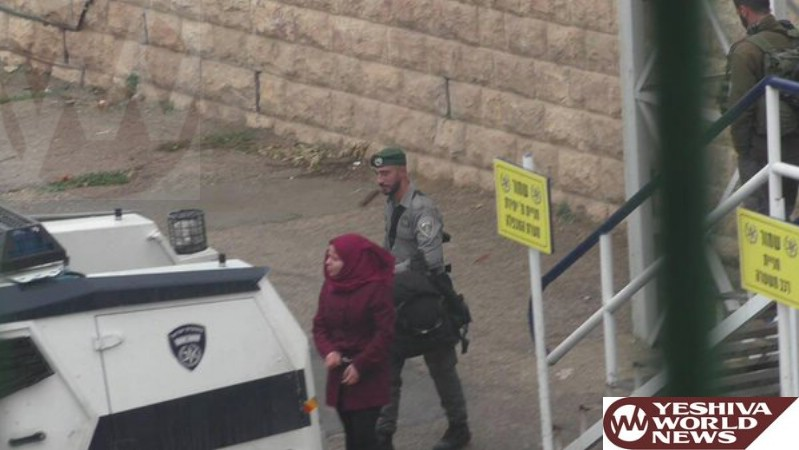 Female Terrorist Armed with a Knife Apprehended in Hebron