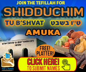 Join The Tefillah On The Day Of Segulah Of Tu B'shvat – For Free