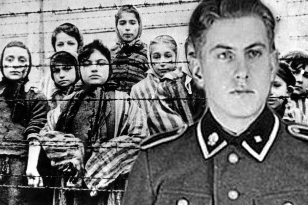 a history of the holocaust bauer pdf