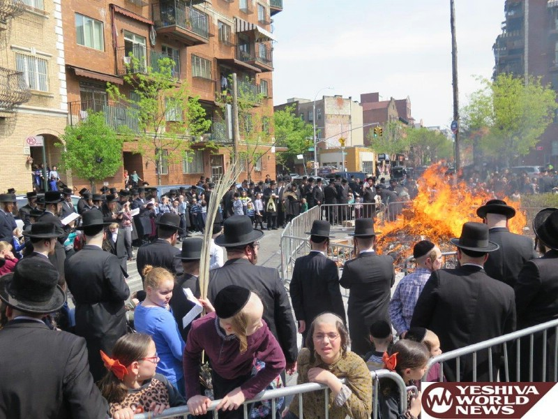 Photo Gallery: Erev Pesach 5776 In Williamsburg (Photos by JDN)
