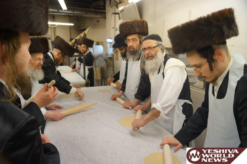Photo Gallery: Pesach 5776 In Montreal (Photos by Yanky Pollack - JDN)