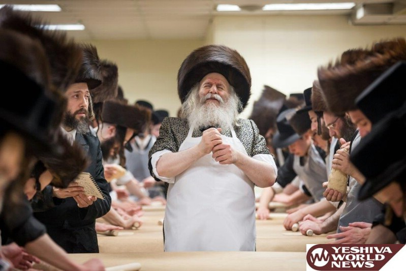 Photo Gallery: Pesach 5776 in Bobov (Photos by JDN)