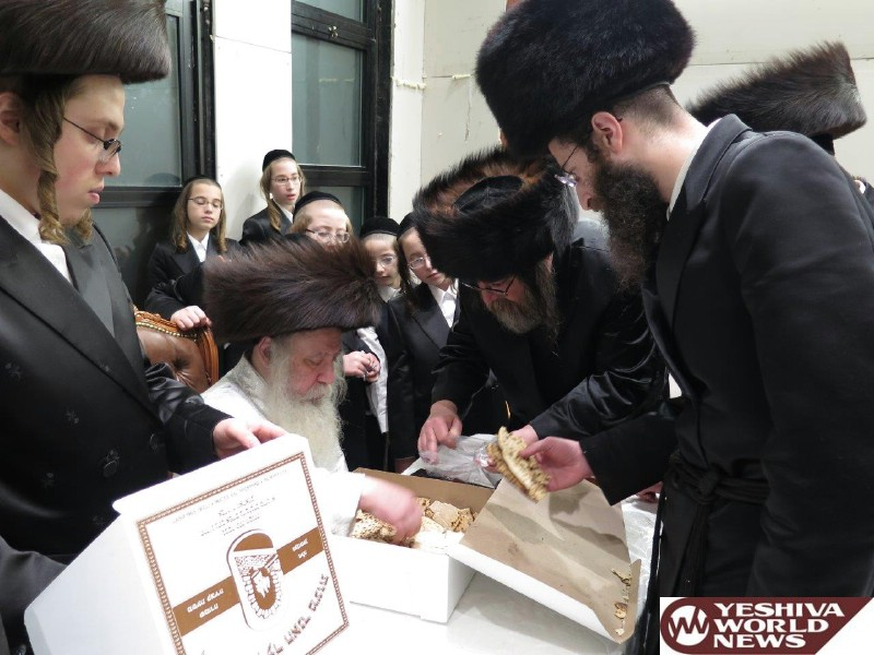Photo Essay: Pesach 5776 With Admorim From Around The World [GALLERY 2] (Photos By JDN)