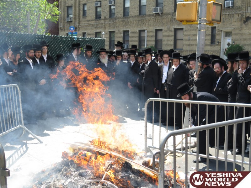 Photo Essay: Pesach 5776 With Admorim From Around The World [GALLERY 1] (Photos By JDN)