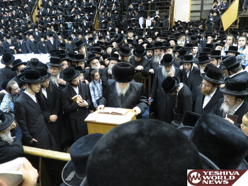 Photo Essay: The Belzer Rebbe At The Lag Baomer Tish 5776-2016 (Photos by JDN)