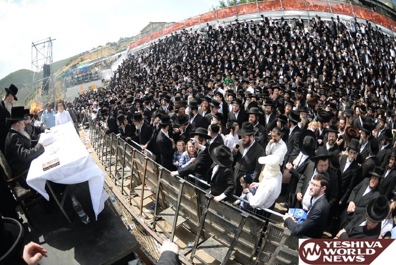 Photo Essay: The Lelover Rebbe In Meron On Lag BaOmer 5776 - 2016 (Photos by JDN)