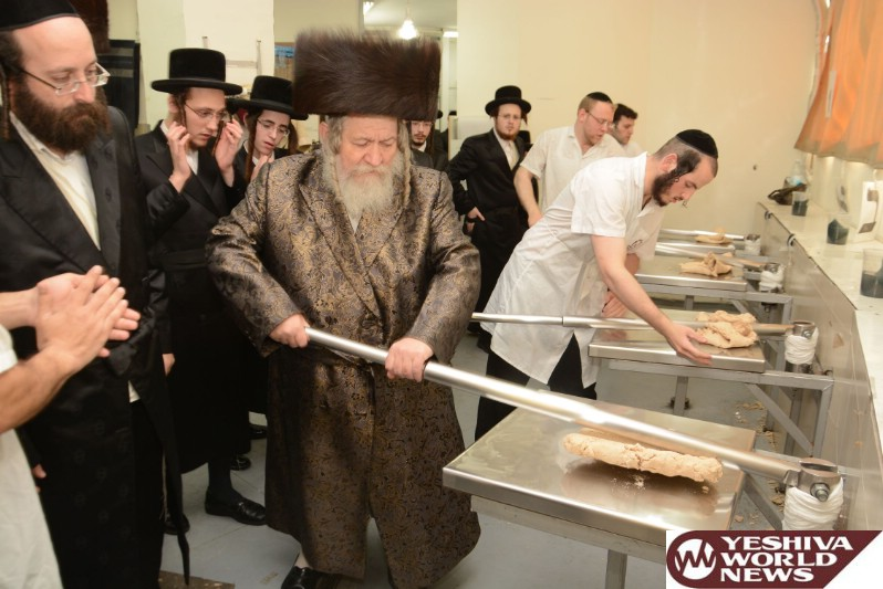 Photo Essay: Pesach 5776 With Admorim From Around The World [GALLERY 3] (Photos By JDN)