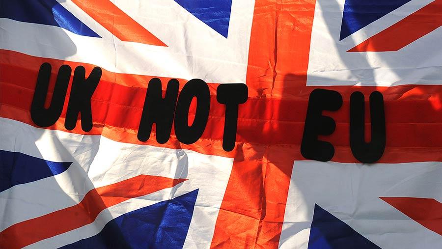 4 Scenarios Eyed To Keep Britain In The EU Despite Exit Vote