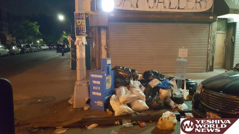 PHOTOS: Hikind Addresses Illegal Garbage Dumping in Boro Park