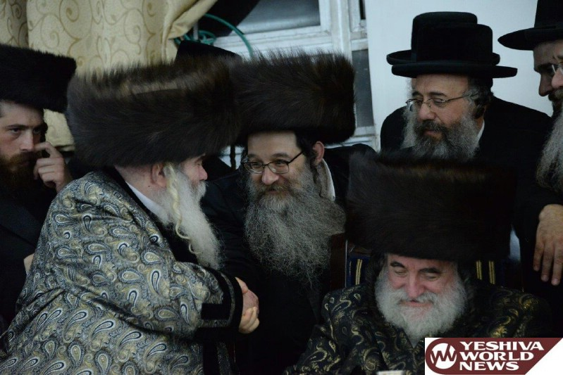 03 Rabonim at the Simcha (13)