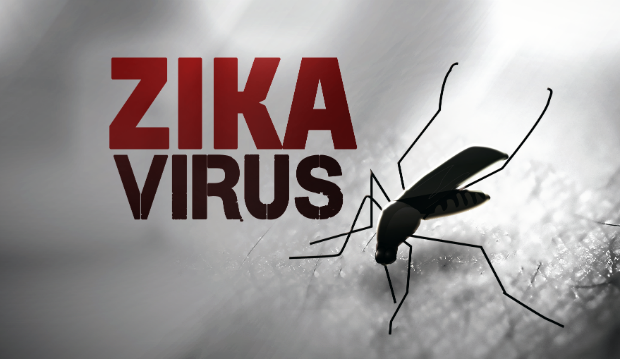 Texas infant's death linked to travel-related Zika infection