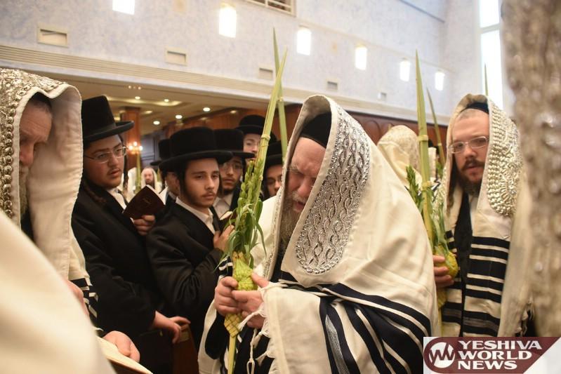 Photo Essay: Belzer Rebbe Shaking Lulav On Chol Hamoed Sukkos 5777 (Photos by JDN)