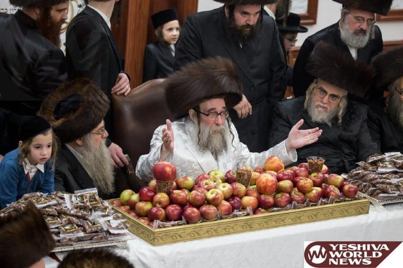 Photo Essay: Sukkos 5777 By The Toldos Tzvi Spinka Rebbe (Photos by JDN)