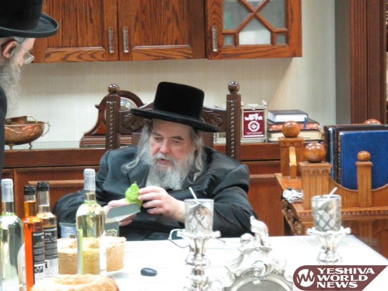Photo Essay: Belzer Rebbe Putting Sechach On His Sukkah And Choosing An Esrog (Photos by JDN)