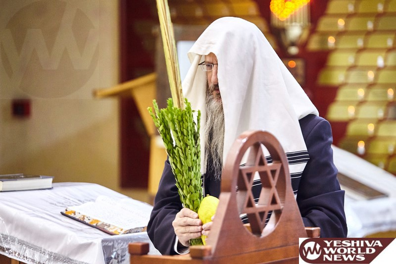 Photo Essay: Sukkos 5777 By Russian Chief Rabbi, Rav Berl Lazar (Photos by JDN)