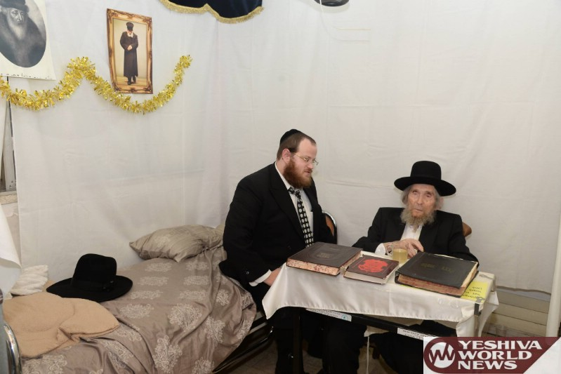 Photo Essay: Maran Hagaon HaRav Shteinman Learning In The Sukkah (Photos by JDN)