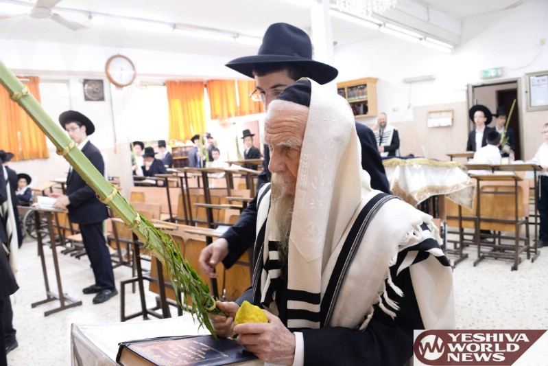 Photo Essay: Hagaon HaRav Gershon Edelstein Rosh Yeshivas Ponevez Shaking Lulav (Photos by JDN)