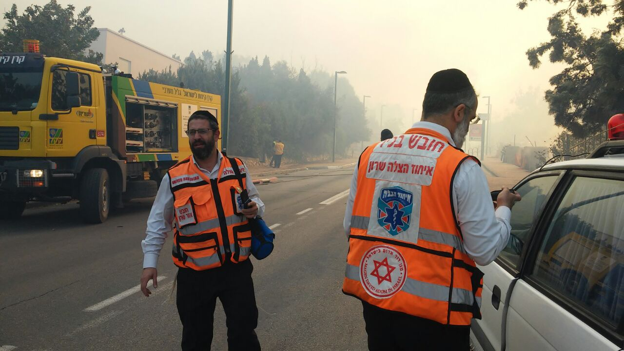 12 arrested on suspicion of arson over series of wildfires in Israel