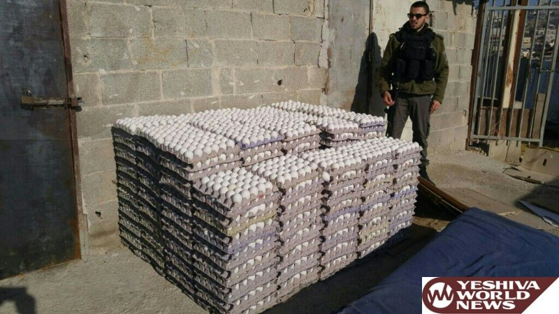 VIDEOS/PHOTOS: Tens Of Thousands Of Illegal Eggs From The PA Confiscated