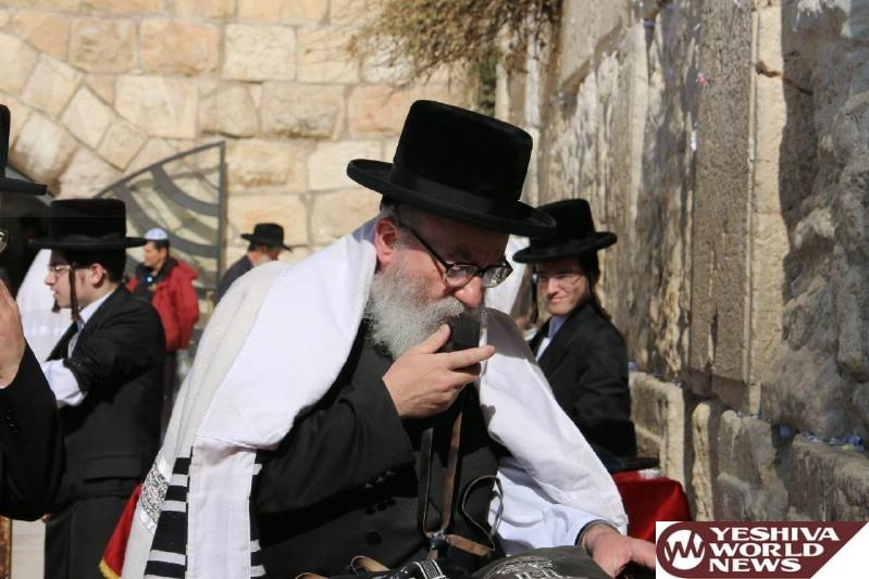 Photo Essay: Rav Ahron Mendel Twersky, Son Of The Skverer Rebbe At The Kosel (Photos by JDN)