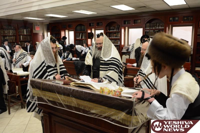 Photo Essay: Purim 5777 With Admorim From Around The World ...
