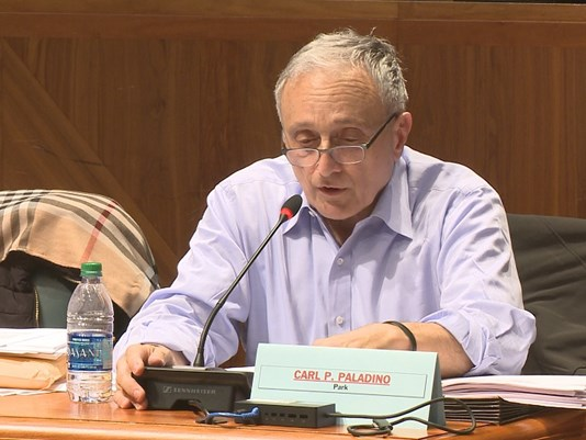 Mixed reaction to Paladino's removal from school board