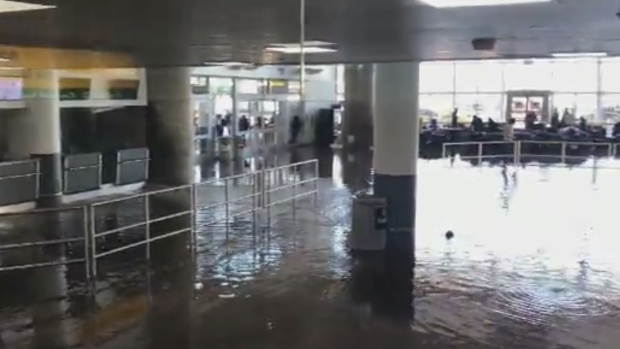 JFK woes 'unacceptable — Airport agency head