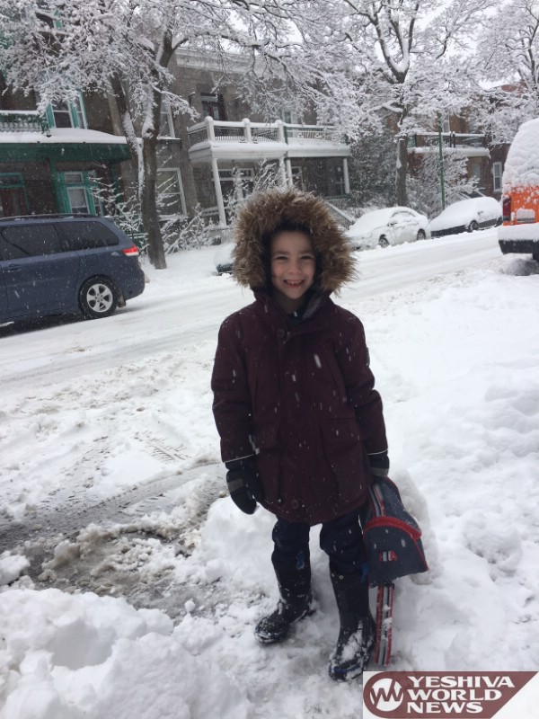 snow storm narrative essay Blizzards by: jenee mcdonald blizzards are a combination of wind and snow usually blizzards have heavy snow fall and severe cold, but not always.
