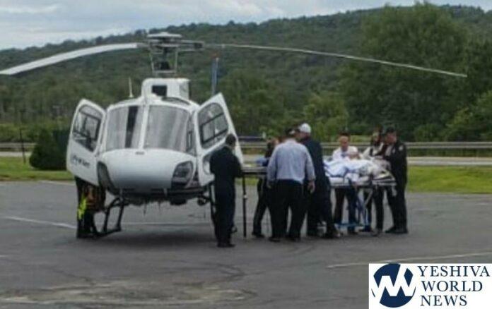 TEHILLIM – Yeshiva Bochur Struck By Falling Tree In Catskills, Suffers Serious Head Injury 1